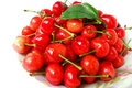 Fruits de cerise Photo stock
