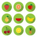 Fruits flat icons set of in the green round frames Stock Photography