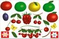 Fruits icons Royalty Free Stock Image