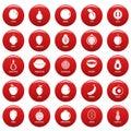 Fruits icons set vetor red Royalty Free Stock Photo