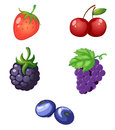 Fruits illustration of on a white background Royalty Free Stock Images
