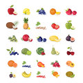 Fruits illustrations set.