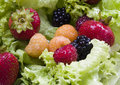 Fruits and lettuce Royalty Free Stock Photo