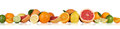 Fruits oranges lemon grapefruit in a row isolated Royalty Free Stock Photo