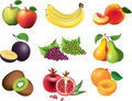 Fruits photo realistic detailed set Stock Photos