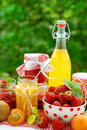 Fruits preserves Royalty Free Stock Photos