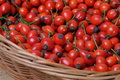 Fruits of rose hip in a wicker basket on worktop Royalty Free Stock Images