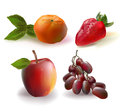 Fruits set collection realistic on white background Stock Photography