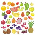 Fruits set with various seasonal and exotic Stock Images