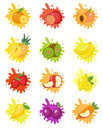 Fruits splash set of labels. Fruit splashes, drops emblem.
