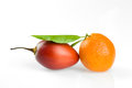 Fruits tangerine and tamarillo isolated an white Royalty Free Stock Images