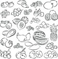 Fruits vector illustration of collection in line art mode Stock Photos
