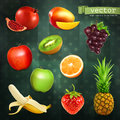 Fruits vector illustrations set with on dark background Stock Image