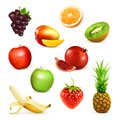 Fruits vector illustrations set with on white background Stock Images