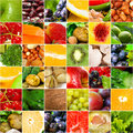 Fruits vegetable big collage Stock Photos