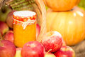 Fruits and vegetables in autumn outdoors thanksgiving holiday concept Royalty Free Stock Photography
