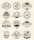 Fruits and Vegetables Logos, Labels and Design Elements