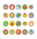 Fruits and Vegetables Vector Icons 5 Royalty Free Stock Photo