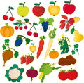 Fruits and vegetables vector illustration of the Royalty Free Stock Images