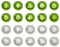 Fruits web icons, green and grey circle buttons Stock Photos