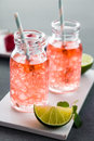 Fruity summer drinks with ice cubes in modern bottles fresh limes for sunny concepts Royalty Free Stock Photo