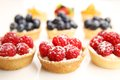 Fruity tarts Stock Photography