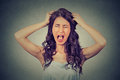 Frustrated and angry woman is screaming out loud and pulling her hair on gray wall background Royalty Free Stock Image