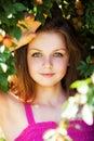 Fruta da colheita da rapariga da árvore de ameixa Foto de Stock Royalty Free