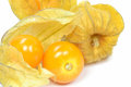 Fruta do Physalis Fotografia de Stock Royalty Free