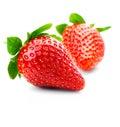 Frutas isoladas - morangos Foto de Stock