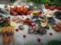 Frutti di mare in ice saefood market Stock Photos