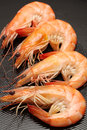 Frying shrimps close up lens Royalty Free Stock Images