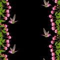Fuchsia and Hummingbird Seamless Border