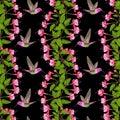 Fuchsia and Hummingbird Seamless Pattern