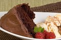 Fudge cake and ice cream chocolate with vanilla raspberries Stock Image