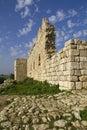 Fuerte Ruins.Israel de Antipatris Fotografía de archivo libre de regalías