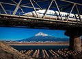 Fuji and Bullet Train Royalty Free Stock Photo