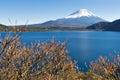 Fujisan at Lake Motosu Royalty Free Stock Photo