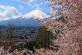 Fujisan in Spring Royalty Free Stock Photo