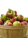 Full basket of apples Royalty Free Stock Photography
