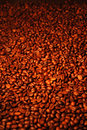 Full coffee bean Stock Photos
