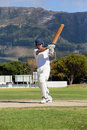 Full length of batsman playing cricket on field Royalty Free Stock Photo