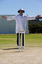 Full length of cricket umpire signalling wide ball during match Royalty Free Stock Photo
