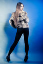 Full length of girl with long hair young woman in fur coat on blue fashionable studio shot winter fashion Royalty Free Stock Images
