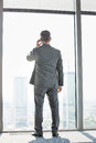 Full length rear view of mature businessman using cell phone white standing near window Royalty Free Stock Photo