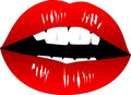 Full lips- vector Royalty Free Stock Images