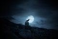 Full moon crow Royalty Free Stock Photo