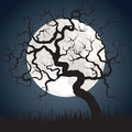 Full moon and gnarled tree halloween spooky scary background with Stock Images