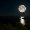 Full Moon and moonlight on night sea Royalty Free Stock Photo