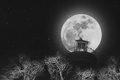 Full moon at night with lighthouse on clear sky with stars, and dead branches, black and white images Royalty Free Stock Photo